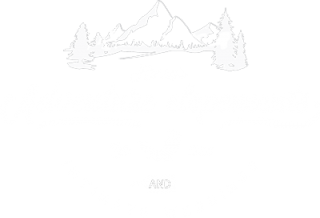 Henry's Adventure Elopements Japan Wedding